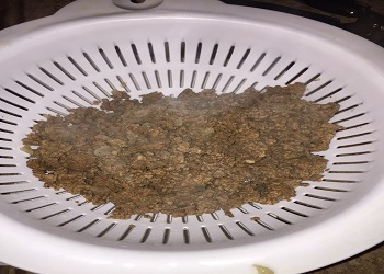 ground beef drained in strainer
