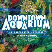 Aquarium | Denver restaurant located in DENVER, CO